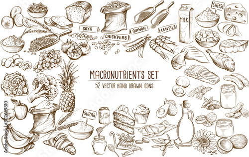 Macronutrient collection of 52 hand drawn individual vector illustrations Wallpaper Mural