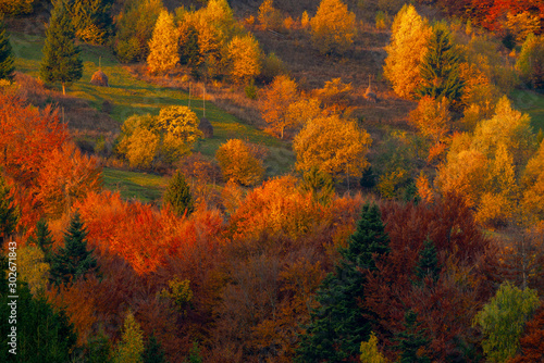 Autumn foliage trees in the mountains Meadow with haystack Fototapet