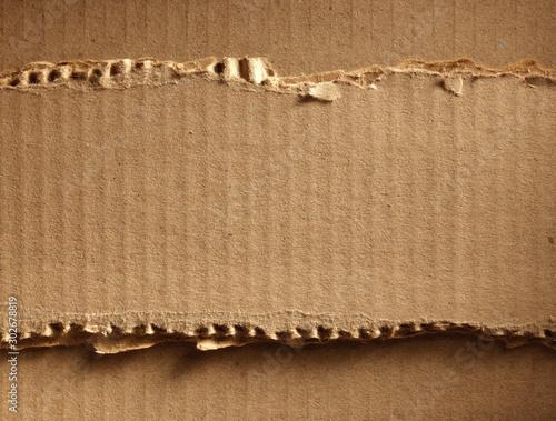 Corrugated cardboard Canvas