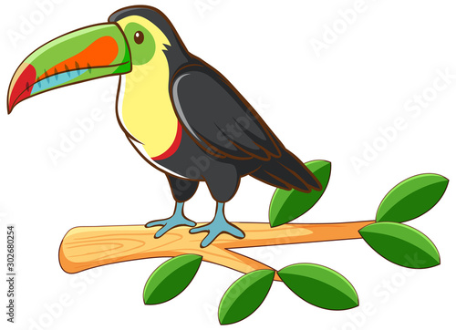 Poster de jardin Jeunes enfants Toucan on white background