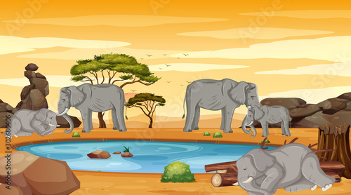 Foto op Plexiglas Kids Scene with many elephants in dry land