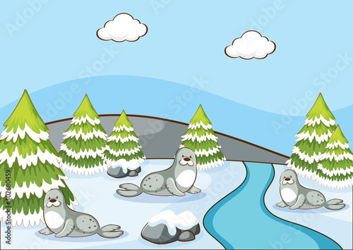 Foto op Plexiglas Kids Scene with seals in winter time