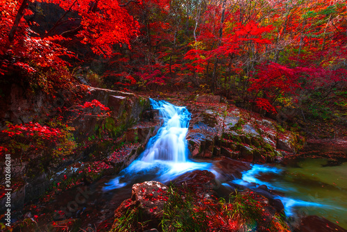 Foto auf Leinwand Wasserfalle Autumn leaves and waterfalls at Baekryeong South Korea National Park