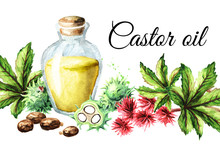 Castor Oil Card With Bottle, Green Castor Fruits, Beans, Flowers, Leaves And Seeds. Watercolor Hand Drawn Illustration, Isolated On White Background
