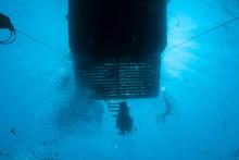 Scuba Diver Boat And Diver