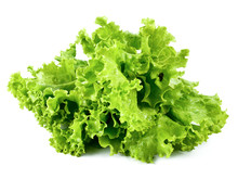 Fresh Lettuce Isolated On A Wh...