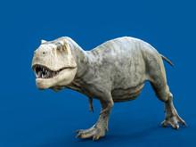 Tyrannosaurus Rex Isolated