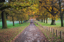 Autumn At Wollaton Hall