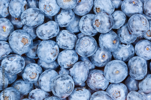 Blueberries bilberries berry fruits collection food background blueberry bilberr Wallpaper Mural