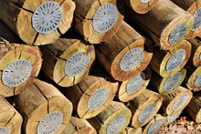 Wooden Poles Treated With (CCA) This Is A Wood Preservative Containing Copper, Chromium And Arsenic.Such Timber Must Not Be Used To Build Children's Play Equipment, Patios, Or Garden Furniture.