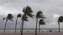 Storm At Beach With Strong Win...