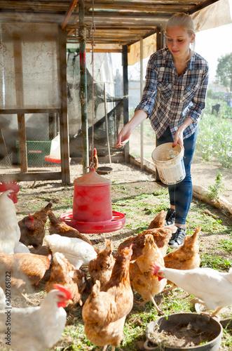 Obraz na plátně Young woman farmer caring for poultry