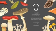 Flat Forest Mushrooms Colorful Template