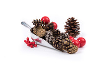 A Scoop Of Pine Cones And Red ...