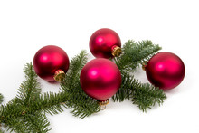 A Christmas Tree Branch With L...