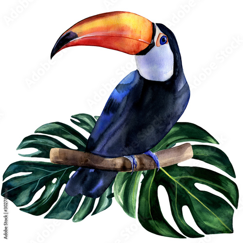 Watercolor hand painted colorful realistic illustration of toucan bird with monstera leaves. Bright tropical composition is perfect for invitation for thematic wedding or party.