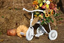 White Painted Childrens Bike, Ripe Pumpkins And A Basket Of Flowers On A Straw Bale Background.