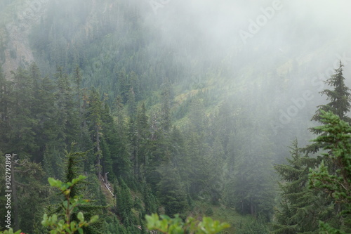 Landscapes of the Pacific Northwest