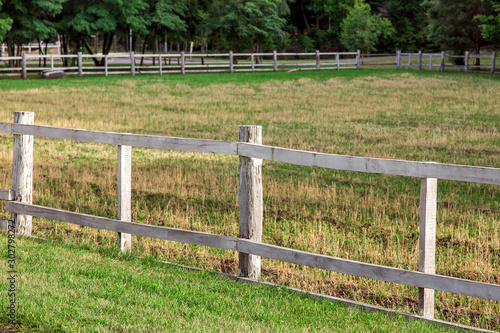 wooden fence pasture agriculture on the sidelines with green grass, nobody and no animals Wallpaper Mural