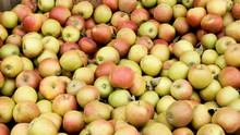 Fresh Organic Apples From Abov...