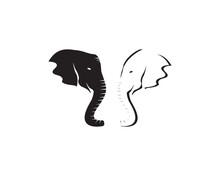 Elephant Icon And Symbol Vector Illustration