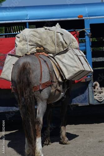 Special panniers and horse equipment are used to maintain a blanced load on the animal.