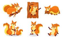 Set Of Cartoon Orange Squirrel...