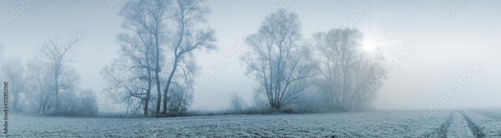 Fototapety, obrazy: Panorama Breitbild einer Naturlandschaft bei leicher Morgensonne und starkem Nebel