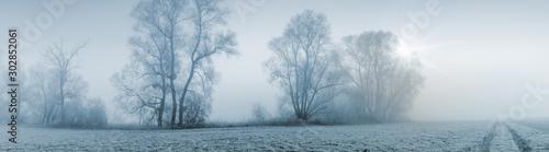 Obraz Panorama Breitbild einer Naturlandschaft bei leicher Morgensonne und starkem Nebel - fototapety do salonu
