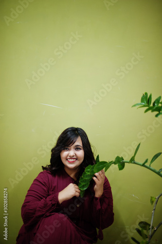 Cuadros en Lienzo Attractive south asian woman in deep red gown dress posed at studio against green background with greenery