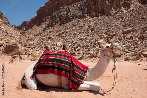 Wadi Rum, Jordan Fototapeta