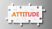 Attitude Complex Like A Puzzle...