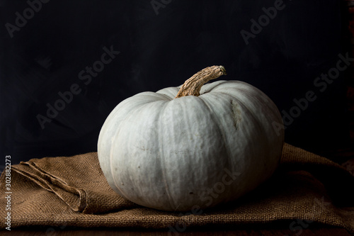 Fototapeta Still life of light pumpkin lies on a rough brown bag for vegetables on a black background view from the side closeup. obraz