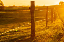 Fence Posts And Wire Fence In ...