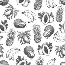 Fresh Exotic Fruit Seamless Pattern. Tropical Fruits, Pineapple, Banana, Coconut, Mango, Papaya. Vector Illustration
