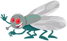 Funny Fly Insect Comic Animal ...