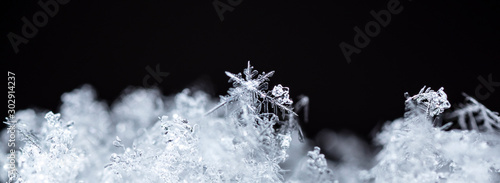 Fotomural winter photo of snowflakes in the snow