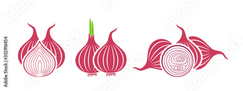 Photo Onion logo. Isolated onion on white background