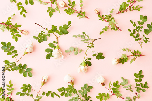 Flat lay pattern with small white flowers and green leaves on a pink background - 302941464