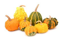 Seven Ornamental Gourds - Mix Of Colours