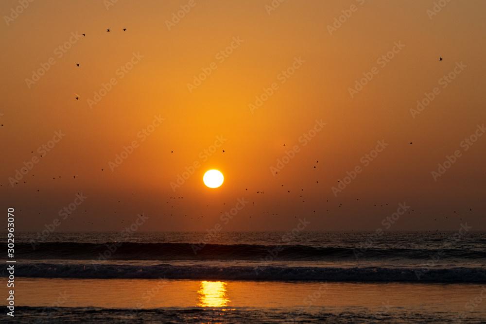 Sunset over the Atlantic Ocean with flocks of bird silhouette, Agadir, Morocco