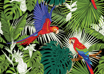 Tropical plants and flowers and birds. Seamless pattern, background. Colored and outline design. Vector illustration. Isolated on black background..