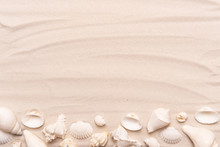 Sea Shells With White Sand. Tr...
