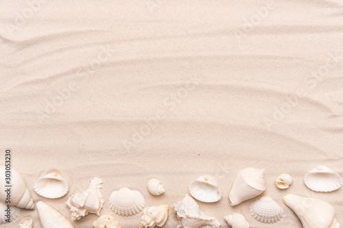 Valokuva Sea shells with white sand. Tropical background