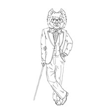 Humanized West Highland White Terrier Breed Dog Dressed Up In Vintage Outfits. Design For Dogs Lovers. Fashion Anthropomorphic Doggy Illustration. Animal Wear Suit, Tie Bow, Glasses, Walking Stick