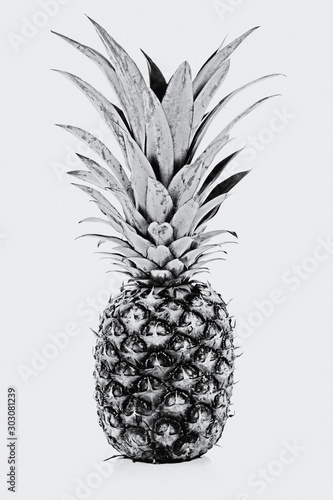 Fototapety, obrazy: Trendy home interior decoration canvas - single ripe and whole pineapple isolated on a white background (black and white vintage effect)