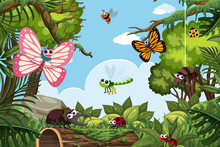 Insects In Jungle Scene