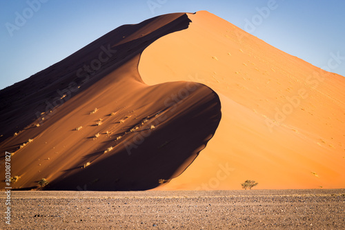S shaped dune at sunset in Sossusvlei, Namibia. Canvas