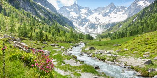 Valokuva Panorama einer Landschaft mit Wildbach und Gletscher im sommerlichen Zillertal i