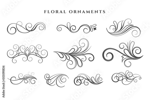 Obraz set of floral ornaments decoration swirl patterns - fototapety do salonu